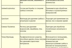 Таблица средств для борьбы с плесенью