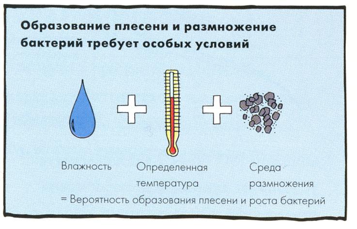 Картинки по запросу причины появления грибка