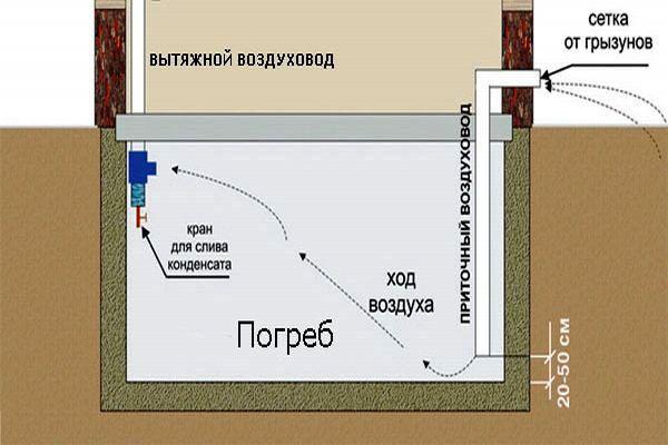 Конструкция вентиляции в погребе